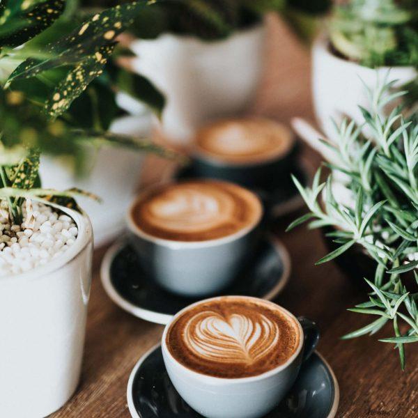 Maraba Coffee Contact Us